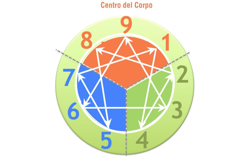 centro-delle-viscere
